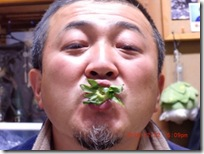 ichigo039-20121223