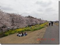 kasenjiki5-20110410