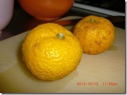 yuzucya004-20121214