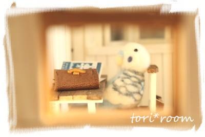 23-9-29インコちゃん2