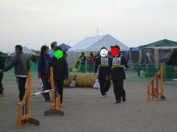 2011fci1