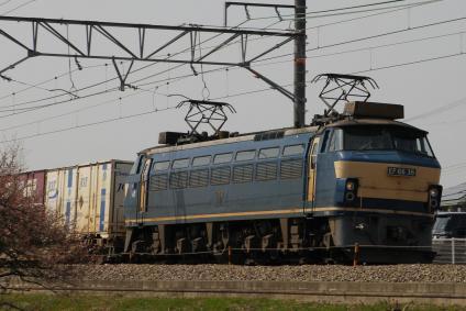 E7D_1396.jpg