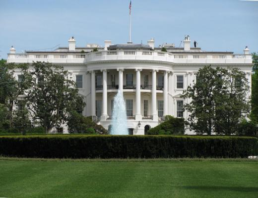 whitehouse_back01.jpg