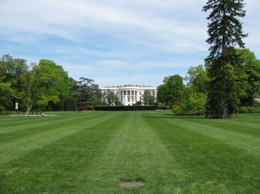 whitehouse_back02.jpg