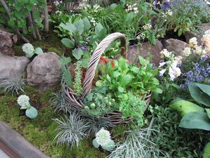 IMG_2644 野菜バスケット