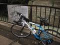 全体図と自転車