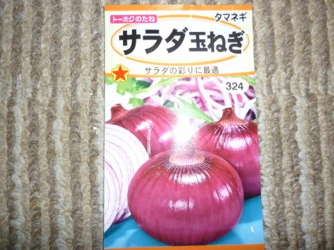 赤玉ねぎの種