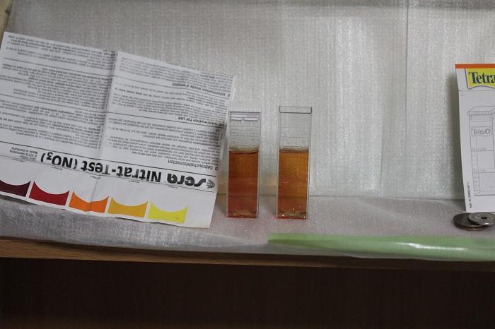 硝酸塩2-11