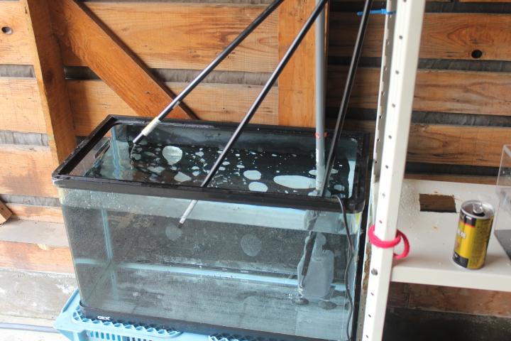 実験 キューブ2 排水
