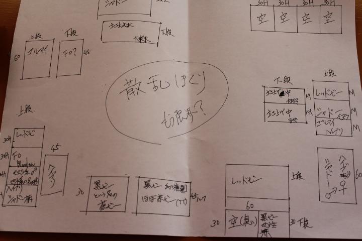 20130614185245fcc.jpg