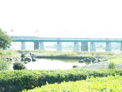 002_20101114203759.jpg