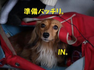 004_20100620204237.jpg