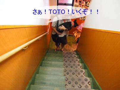 toto0918-5.jpg