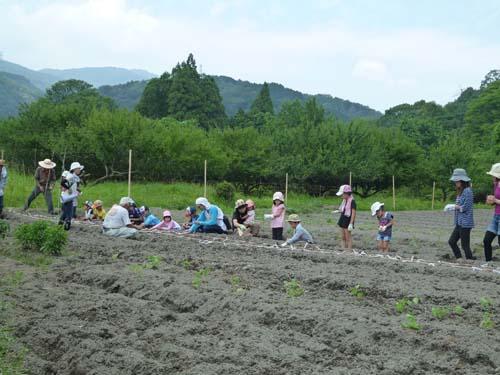 20130728里川体験教室