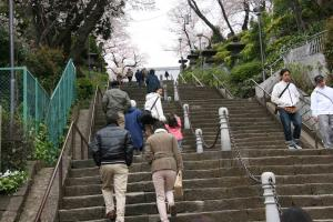 池上本門寺 長い階段
