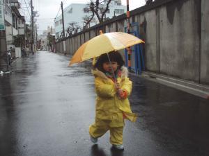 コチコ 雨2