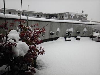 2013114積雪