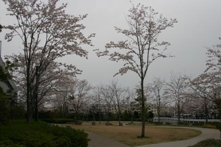 IMG_9316j.jpg