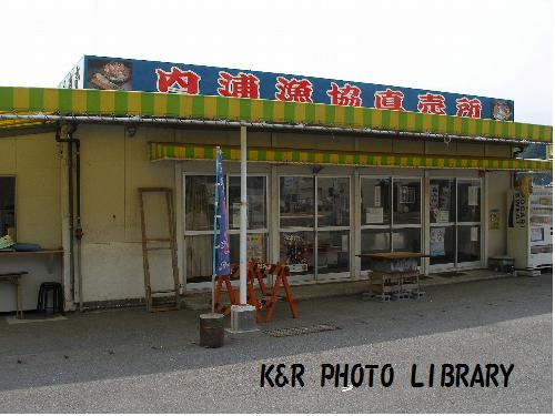 内浦漁協直売所