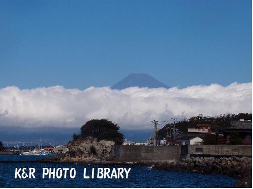 富士山を見ながら海へ