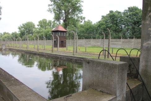 アウシュビッツ プール