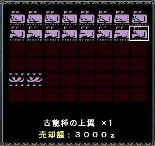 mhf_20101229_200125_109s.jpg