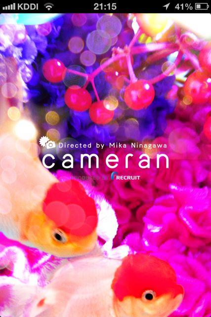 cameran最初