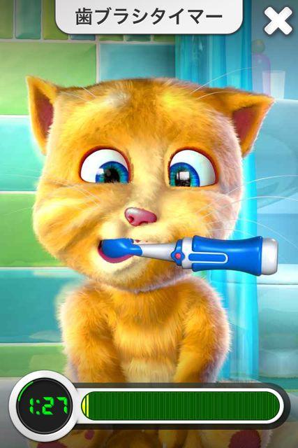 ジンジャー 歯ブラシ