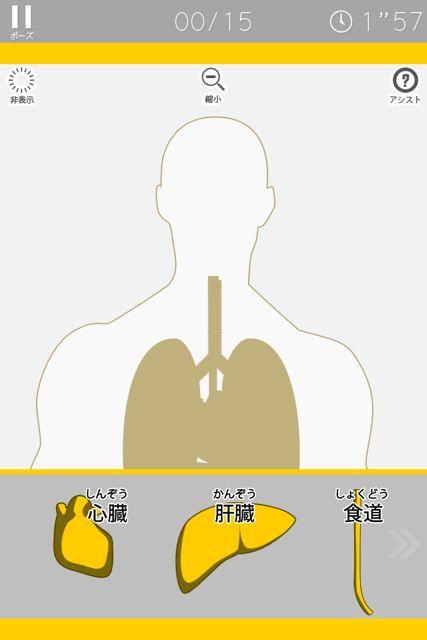人体パズル 臓器エキスパート