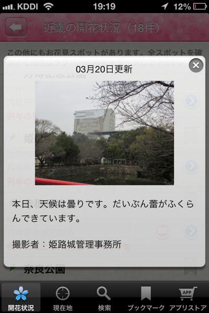お花見 姫路城 写真