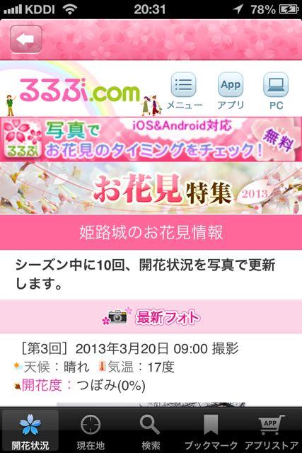 お花見 姫路城3