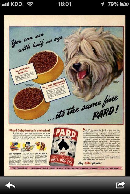 アメリカ広告 保存