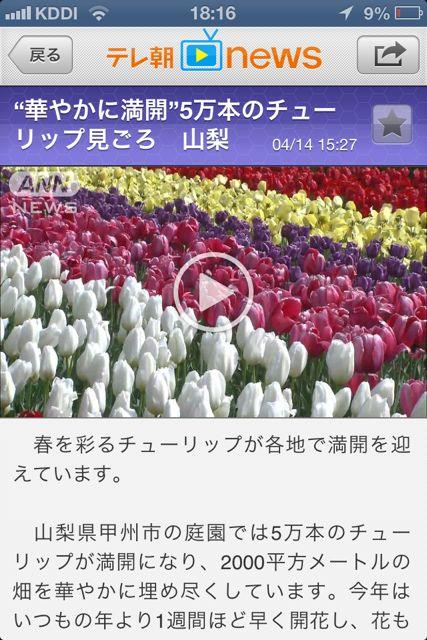 テレ朝news ヘッドライン3