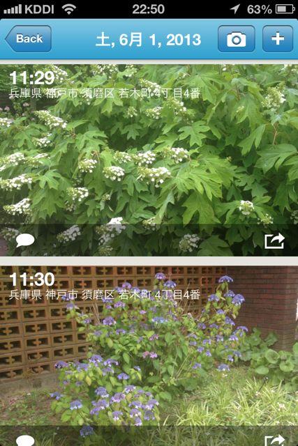 PhotoCal カレンダー大