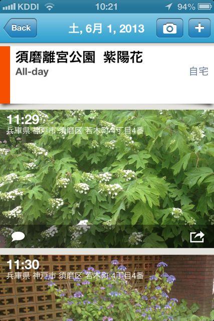 PhotoCal 紫陽花