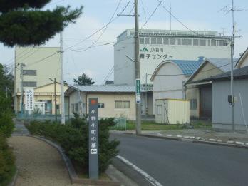 yogarasu1.jpg