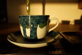 森のカップ