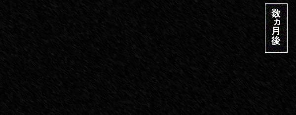netora024.jpg