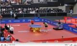 世界卓球2011 王励勤(中国)VS許(中国)