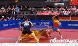 世界卓球2011 張継科(中国)VSティモボル