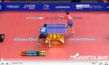 世界卓球2011 張継科(中国)VS王皓(中国)