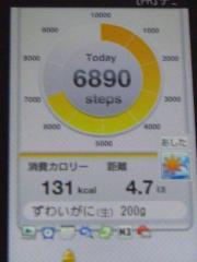 2010-07-08.jpg