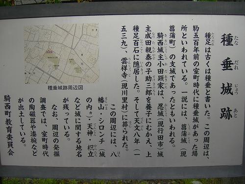 100_1274.jpg
