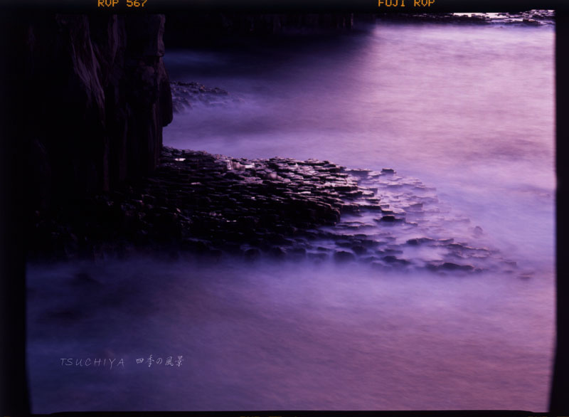 城ヶ崎 岩 2