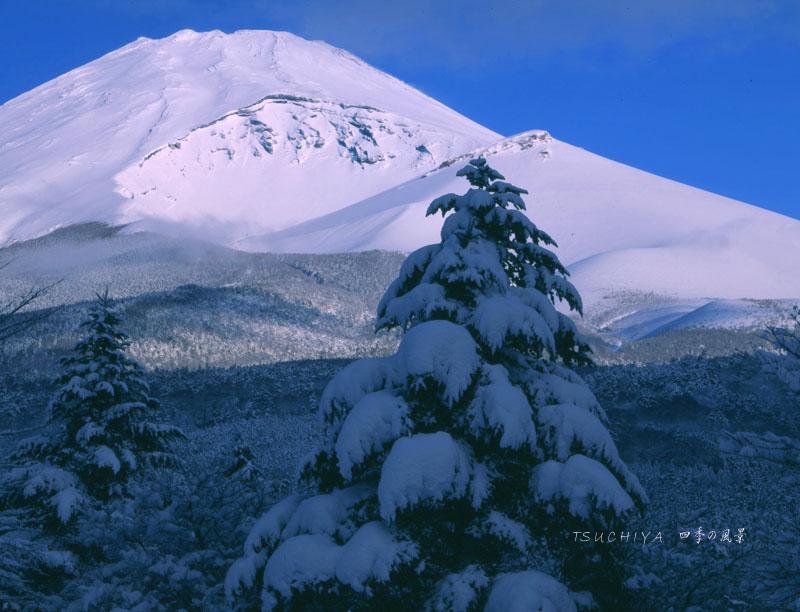 富士山 4合目