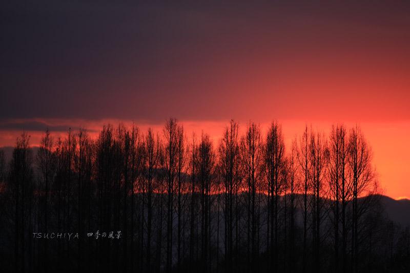 秋ヶ瀬の夕日 3