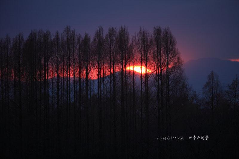 秋ヶ瀬の夕日 4