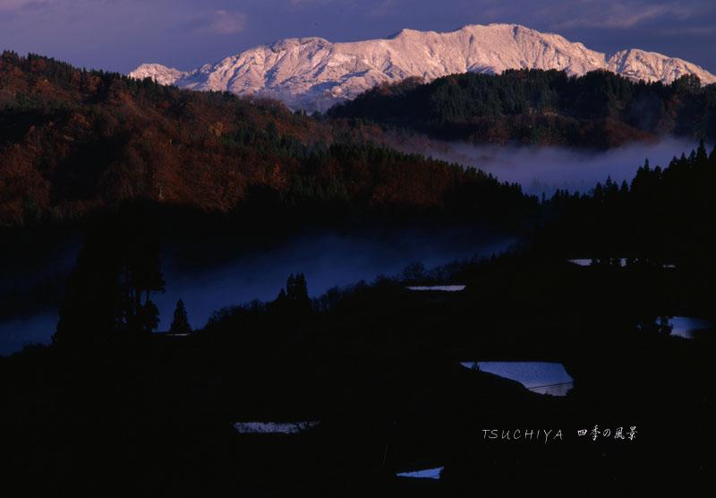 松之山 冬