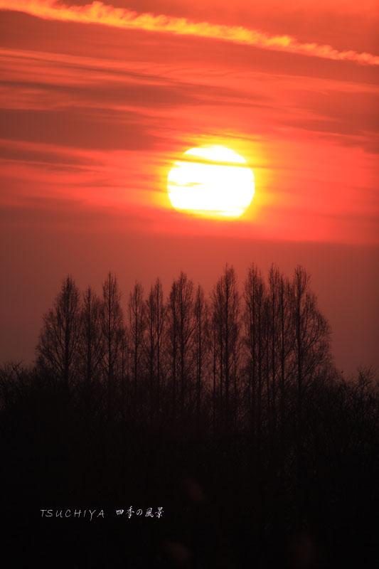秋ヶ瀬の夕日 5
