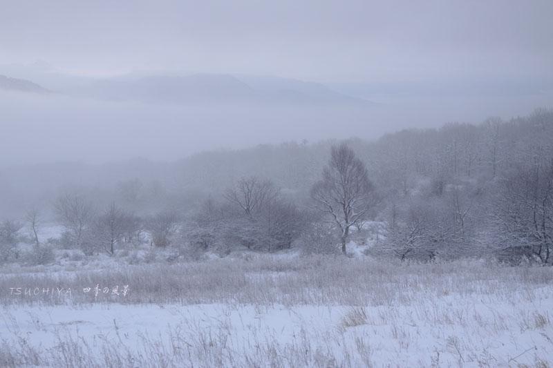 霧の風景 2